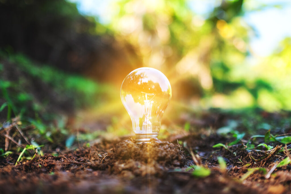 a light bulb glowing on pile of soil